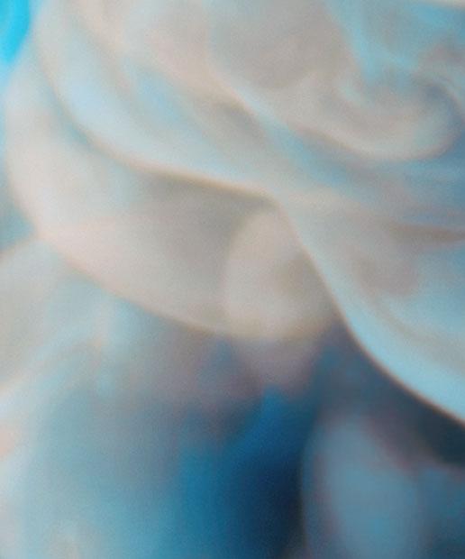 Blooms_1_D2